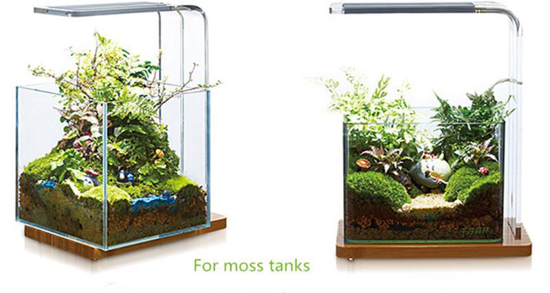 Aquatic Landscaping Led Aquarium Light For Wabi Kusa Moss