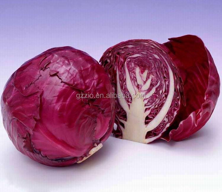 Red cabbage powder  (1).jpeg