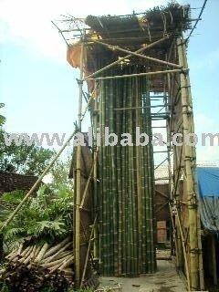 Bamboo Poles (dendrocalamus Asper) - Buy Bamboo Product on Alibaba com