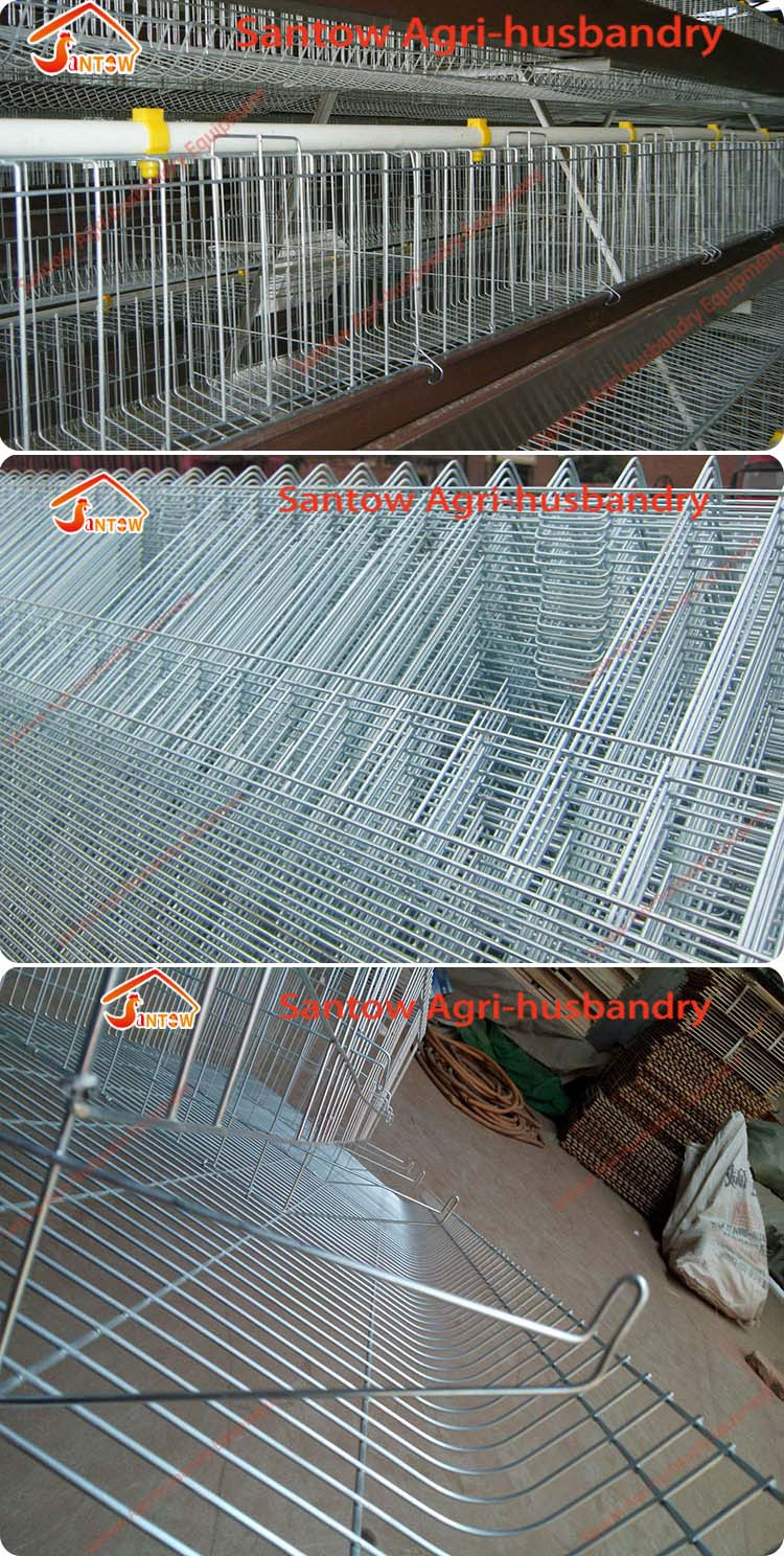 4 Tier Chicken Layer Cages Automatic Poultry Cages Galvanized Wire ...