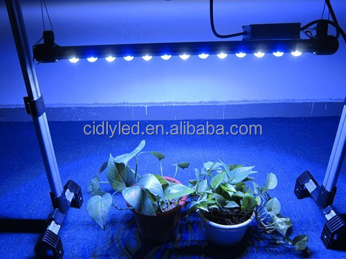 https://sc01.alicdn.com/kf/HTB1hIJaIXXXXXX_XXXXq6xXFXXXh/fish-tank-led-lights-14000K-60Watt-waterproof.jpg