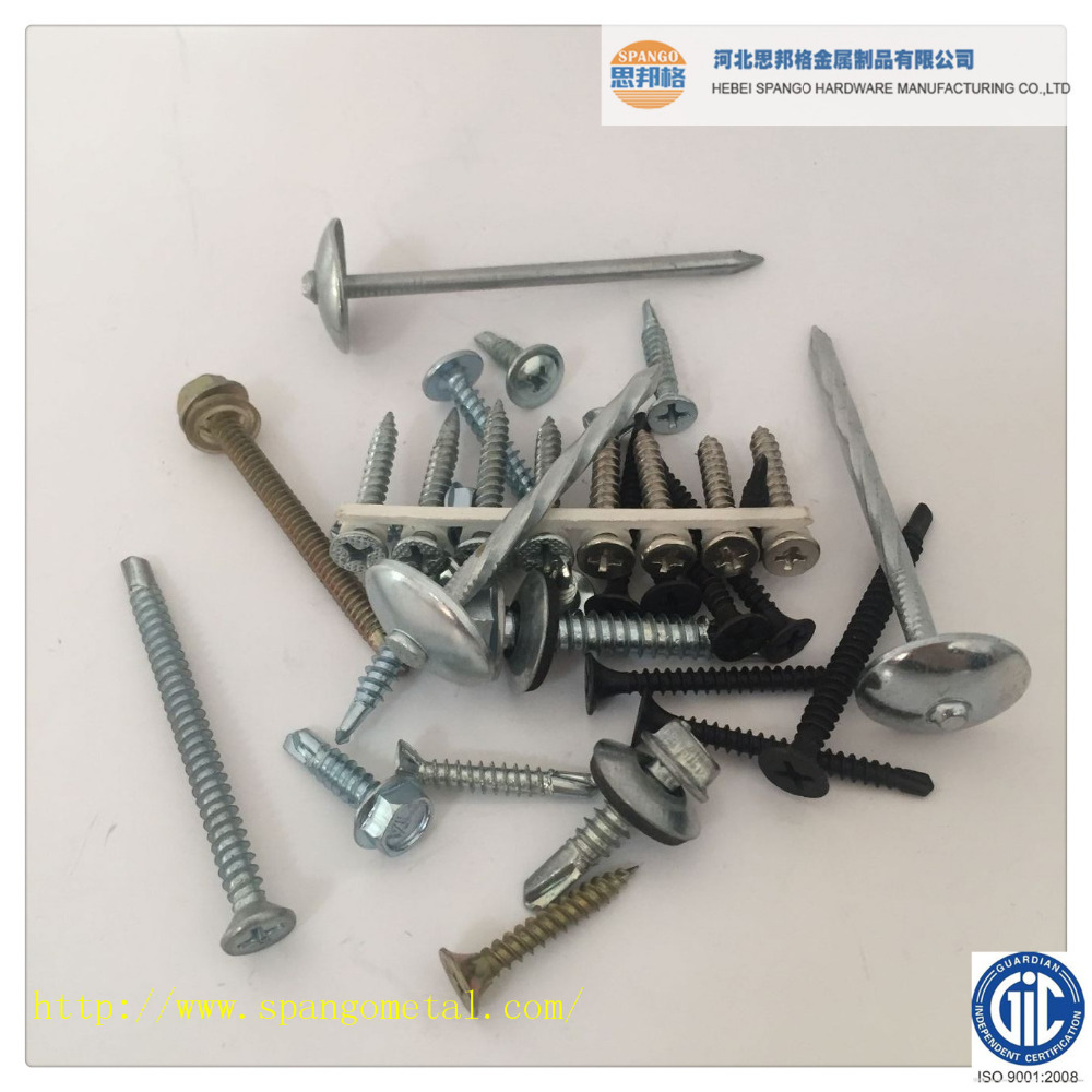 15 Degree Galvanize Roofing collated Coil Nail, common iron nails coils