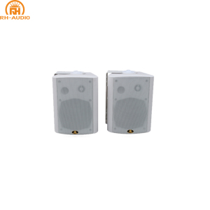 RH-AUDIO Made in China 2.4G Active Wireless Classroom Teaching Speaker