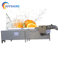 Commercial Industrial Fruit Vegetable Carrot Potato Washing Machine