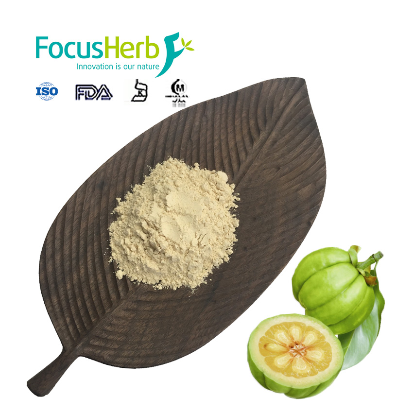 Hca 60 Pure Garcinia Cambogia Extract Powder Buy Garcinia