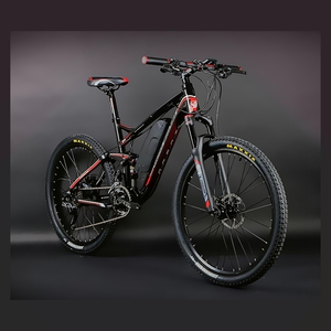 LG 36v 10ah USB dual suspension electric bicycle made in China