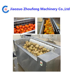 small industry potato Rhizome vegetable and fruit process equipment for washing and peeling machine