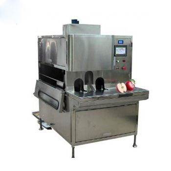 Fully automatic hot sale  fruit and vegetable processing machinery