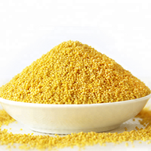 Best Selling Products Yellow Millet Prices