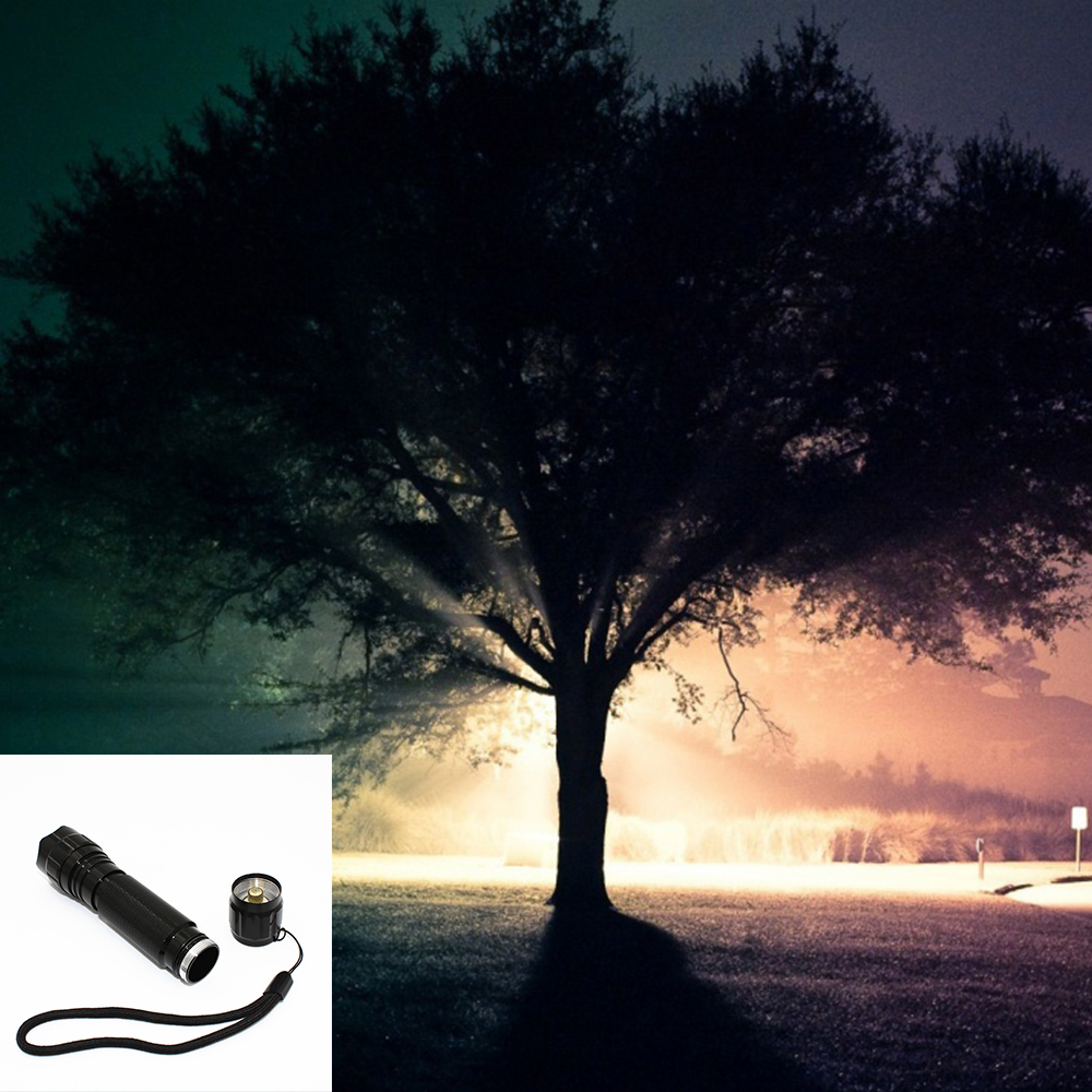 Blue Light 1* Q5 Rechargable Battery Torch Lamp Lithium Ion Battery Flash Light Fishing Japan Torch Light Search By Price