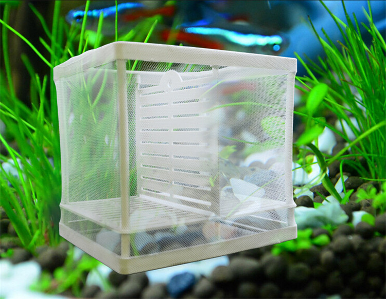 Aquarium Fish Breeding Fry Hatchery Nursery Box Double Deck Separation Net Free Ers
