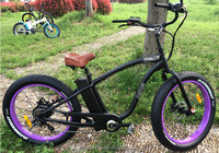 Fat tyre best selling electric bike best electric motorbike used battery bike for sale
