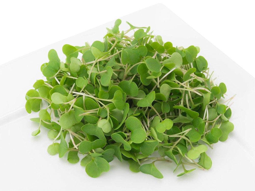 2 Friends Farm Local Northeast Organic Kale Microgreens 3oz