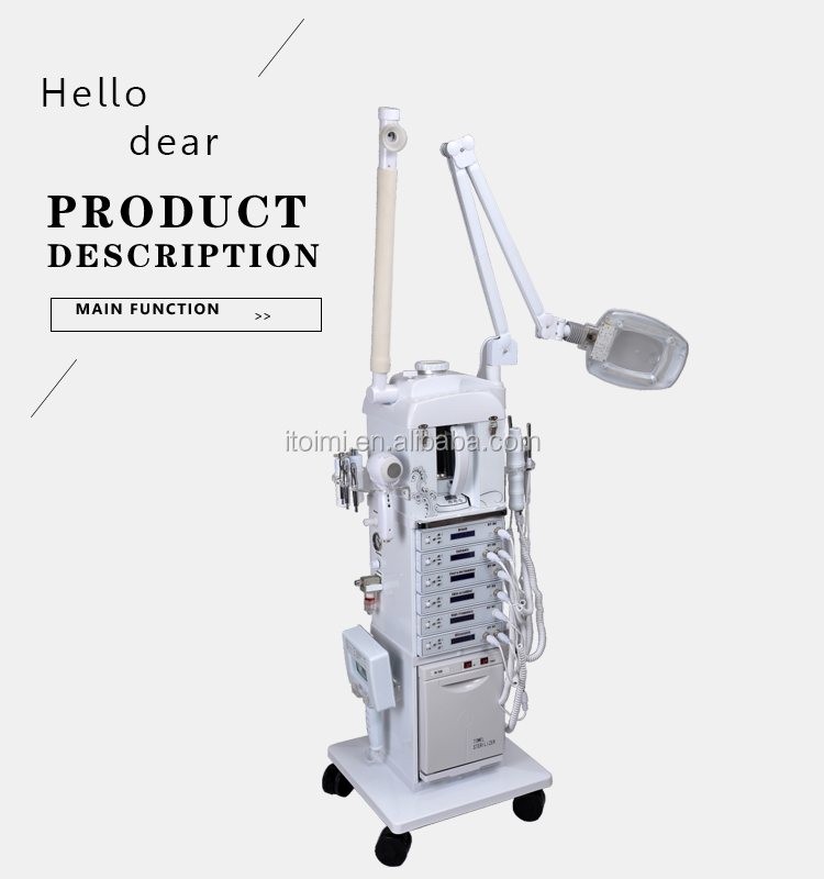 DIY1001 17 in 1 multifunction facial beauty machine OEM servise factory wholesale