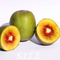 Factory direct sale Grade A import red kiwi fruit