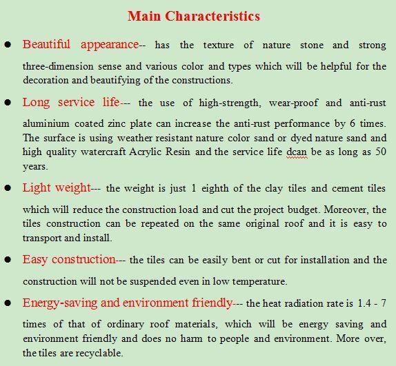 the main characteristics of spain