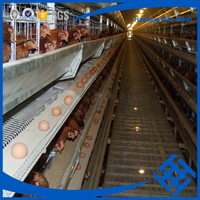 Factory direct supply high quality poultry uganda layer farm chicken cage for sale