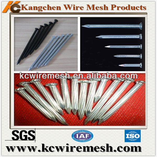 Concrete nails/stee nails distributor in China.
