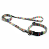 pantone dog collar leash