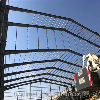 Hot Dipped Galvanized Light Steel Structure Building Workshop