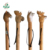 Handmade outdoor wooden walking stick with animal head