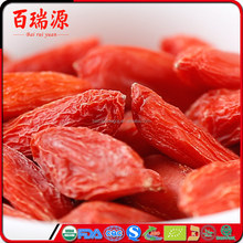 Small Packing goji berry harvester USDA Supports Organic Agriculture goji berry fiyat goji berries vietnam With Gift