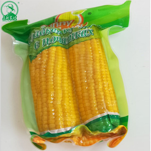 Fresh Sweet Corn with double cob