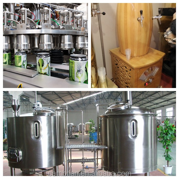 Stainless steel home beer brewing kit with different capacities