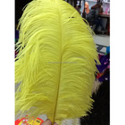 Or plume d'autruche indian coiffe de plumes