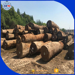 Most Cheap Sapelli / Doussie / Tali / Azobe / Fresh Cut Wood Logs