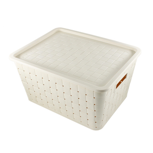 New design rattan plastic stocked box big coontainer for storage