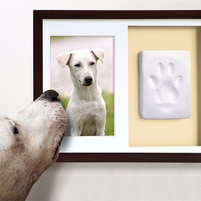 Buy Cheap China pet frame Products, Find China pet frame ...