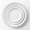 Hot selling design bone China dishes used for wedding and event