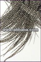 Grizzly Feather Hair Extensions Natural Hair Feathers
