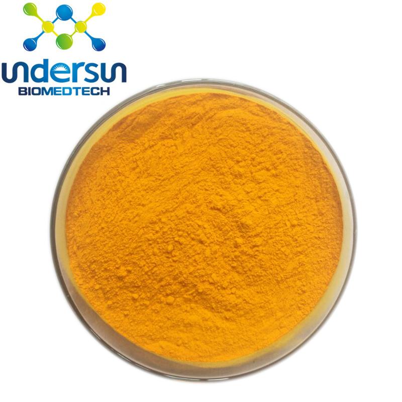 Curcuma Long Extract 5%10% 95% 98% Curcumin