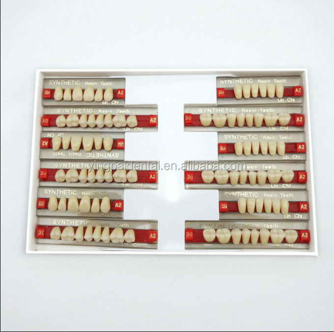 Dental Supply Good Price Multi-layer Acrylic Resin Teeth With Ce ...