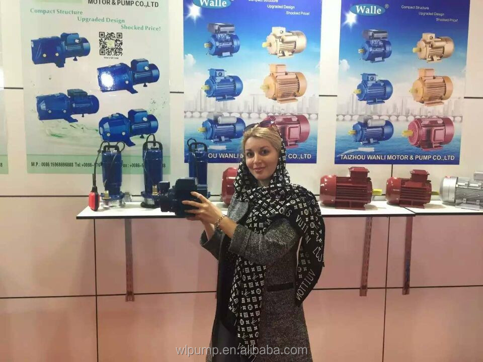 clean water submersible pump QDX series deep well