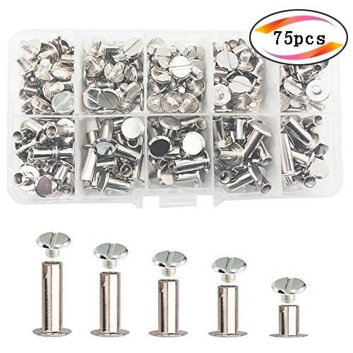 75 Sets Silvery Chicago Screws Assorted Kit 5 Sizes Round Flat Head Stud Screw Posts Metal Accessories Nail Rivet Chicago Button for DIY Leather Decoration Bookbinding (Silver)