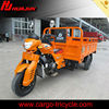 gas powered tricycle/three wheel motor/new three wheel motorcycle