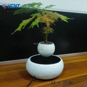 Taiwan Ficus Bonsai Nursery Tree Sale Flying In The Air - Buy Bonsai  Nursery,Taiwan Ficus Bonsai,Bonsai Tree Sale Product on Alibaba com