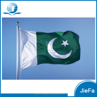 Various Sizes Polyester Pakistan Flag With Customized Logo