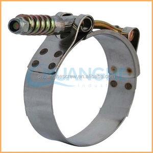 Dongguan Chuanghe Made High Quality color hose clamps