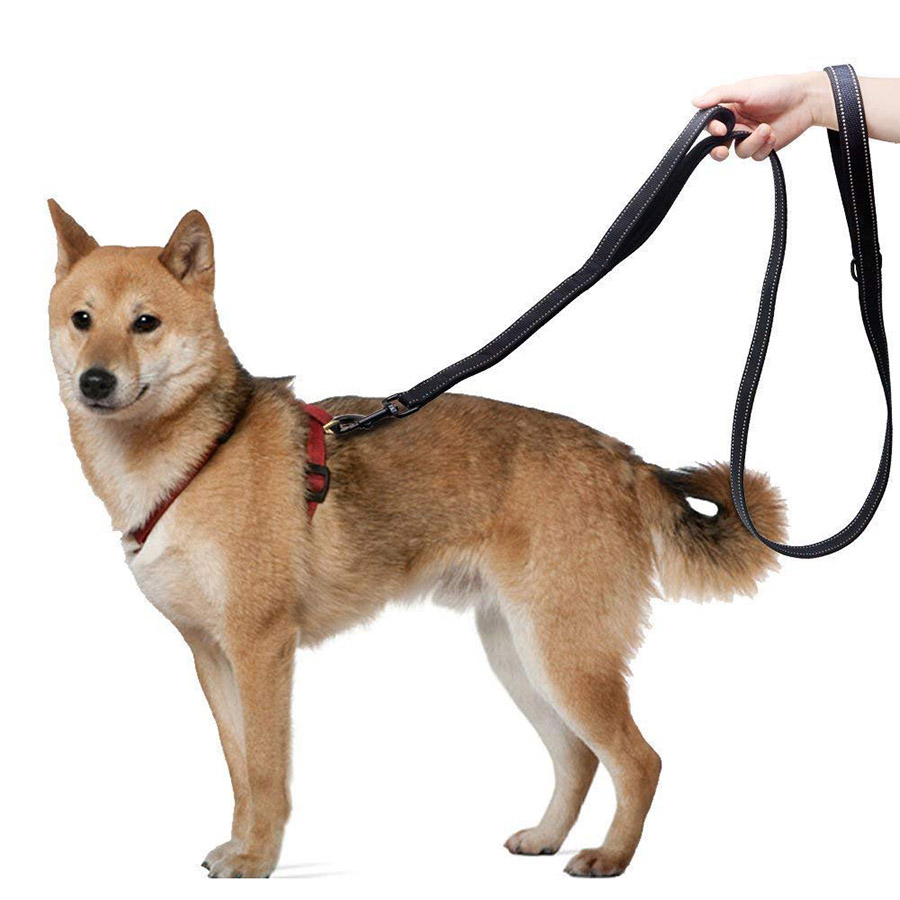 Double Handle Leash for Control Safety Training - Reflective Heavy Duty No Pull Dual Handle Lead for Large Medium Dogs
