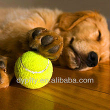 small dog tennis ball toy