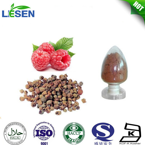 100% natural Palm leaf Raspberry Fruit extract