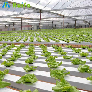 Commercial Farming Greenhouse Hydroponic Growing System Equipment