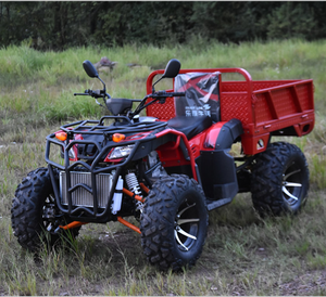 EEC 300CC ATV 4*4 Farm Quad