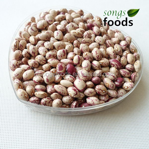 2014 crop Light Speckled Kidney Beans Xinjiang Round