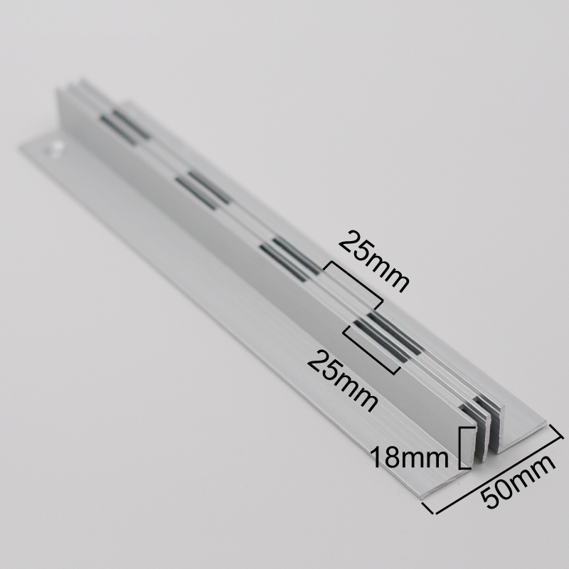 Recessed slotted standard with strip