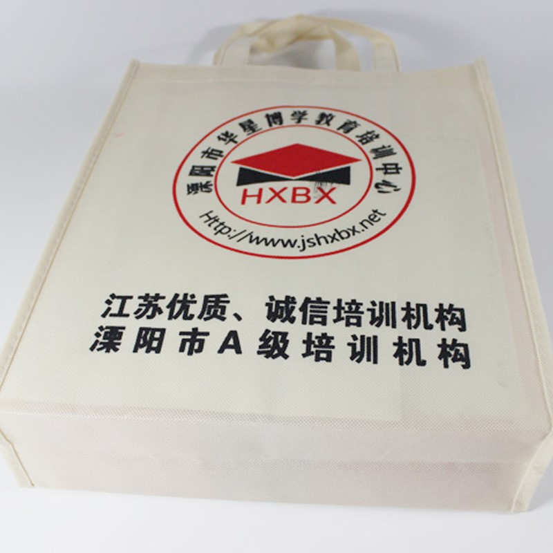 Wholesale high quality pp non woven documents hand bag